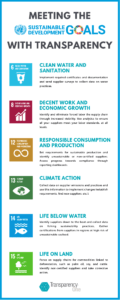 UN Sustainable Development Goals and Transparency